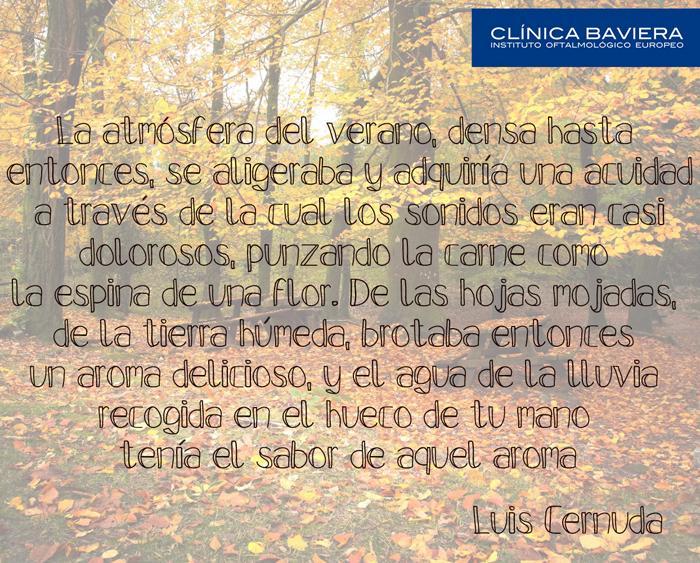 sinestesia cernuda2