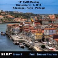 Cartel reunión EVRS Oporto