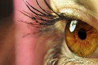 Perfil ojo marrón