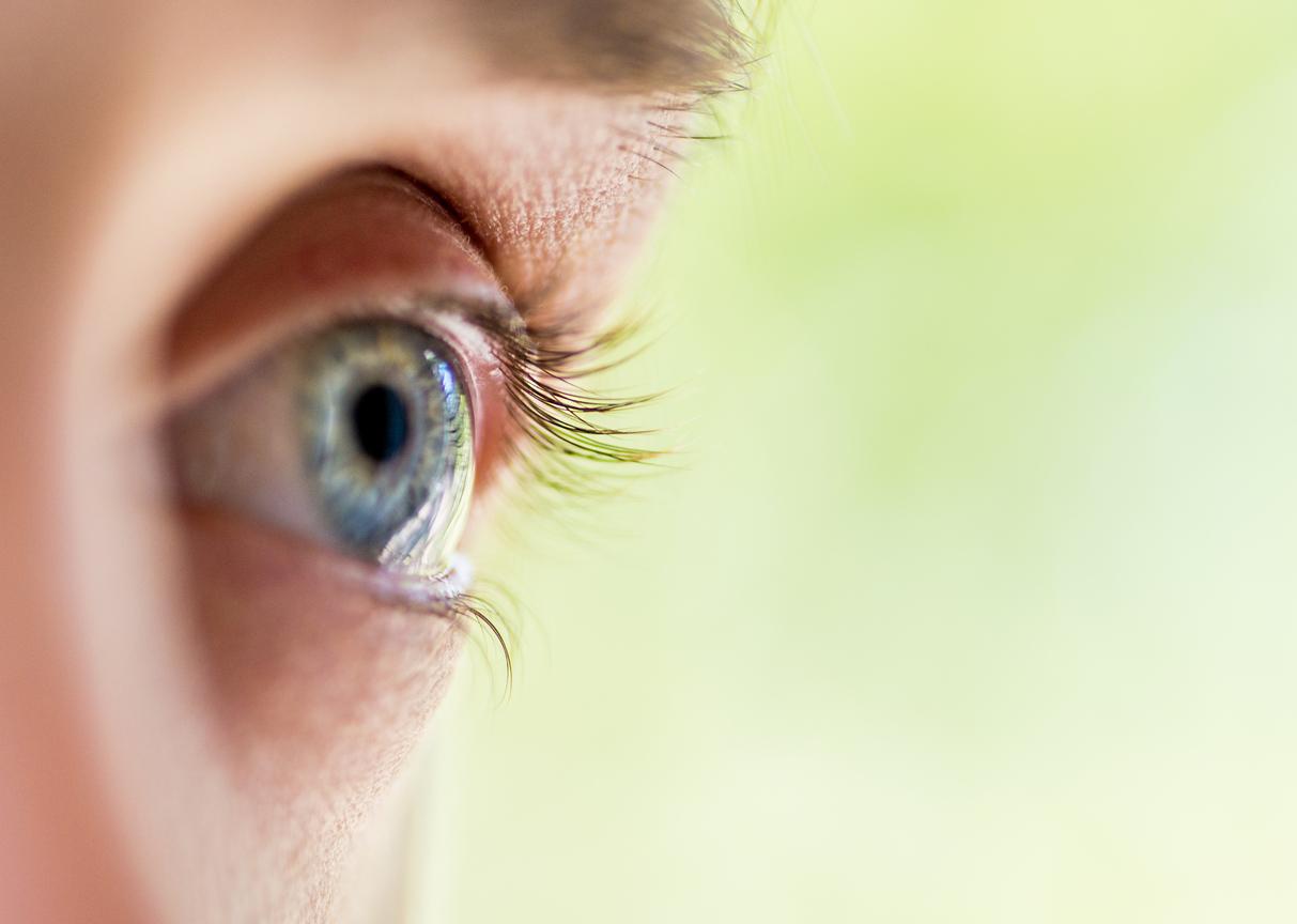 La cuenca del ojo y su morfología   Blog de Clínica Baviera