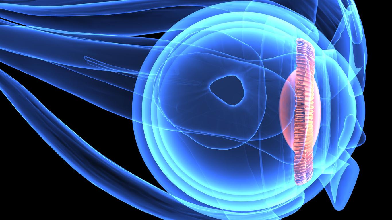 Cuerpo ciliar: definición y funciones | Blog de Clínica Baviera