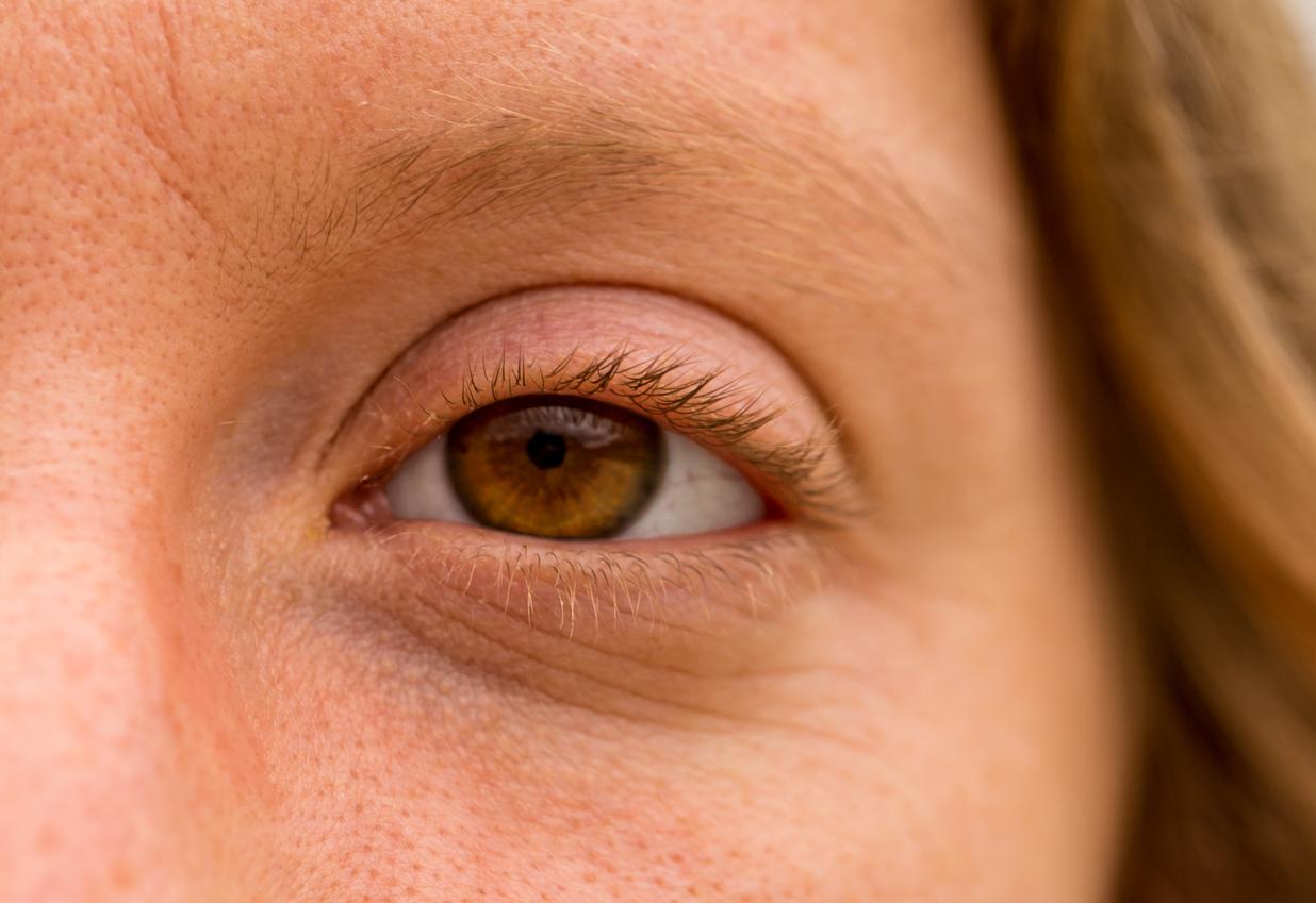 Primer plano ojo marrón con cejas y pestañas rubias
