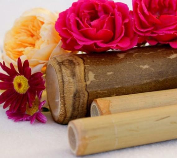 Plan Amigo de Clínica Baviera. Flores e instrumentos masaje